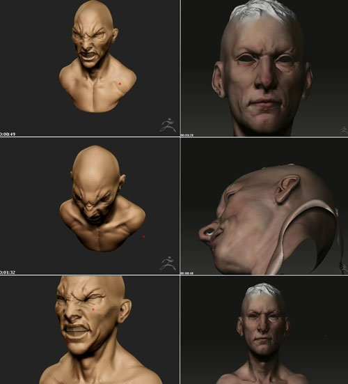 3DTotal - ZBrush Character Creation + DVD
