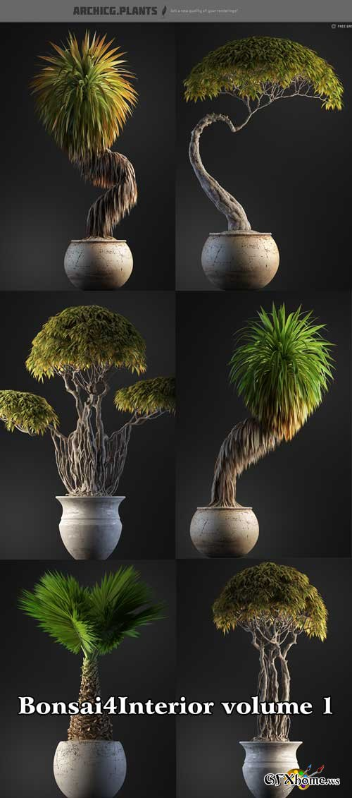 ArchiCG Plants : Bonsai4Interior volume 1