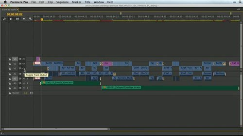 Premiere Pro Guru: Mastering the Timeline with