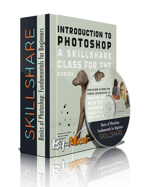 Skillshare - Basics of Photoshop: Fundamentals for Beginners