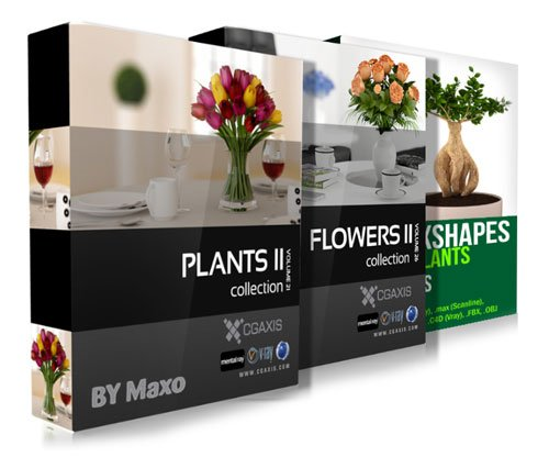 CGAxis Models Volume 21 - 26 and Convexshapes 3D Potted Plants Collection