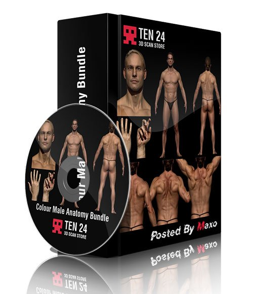 3dscanstore - Colour Male Anatomy Bundle 01
