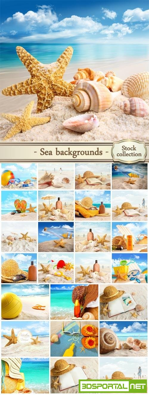 Marine background with shells #2 - stock photos