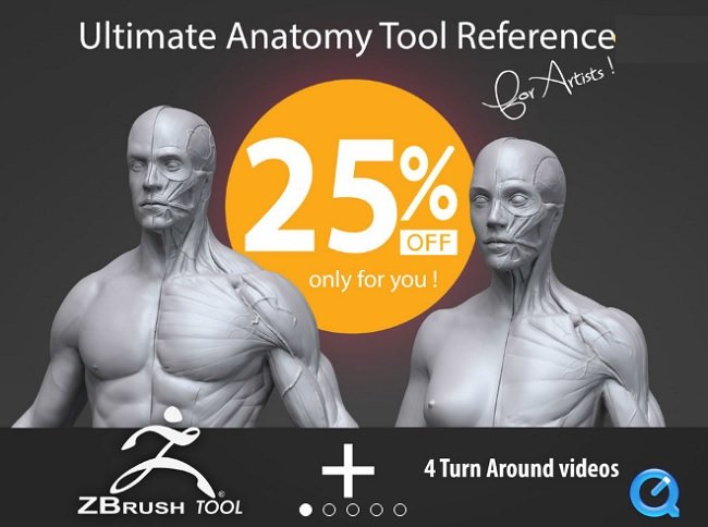 Gumroad - Ultimate Anatomy Too ...