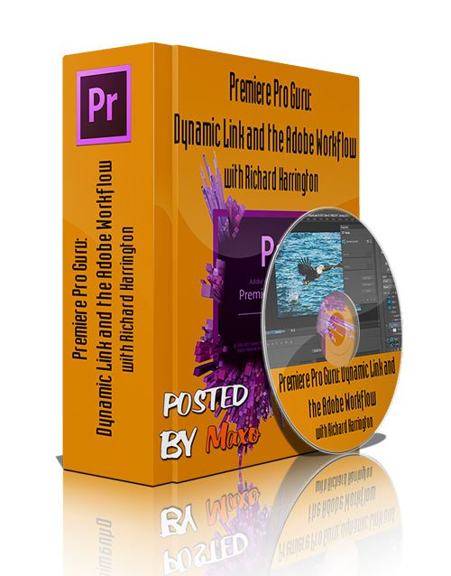 Premiere Pro Guru: Dynamic Link and the Adobe Workflow with