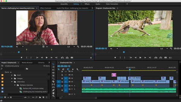 Premiere Pro CC Essential Training (2015)