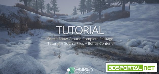 Gumroad - Forest Snow Ground Complete Package