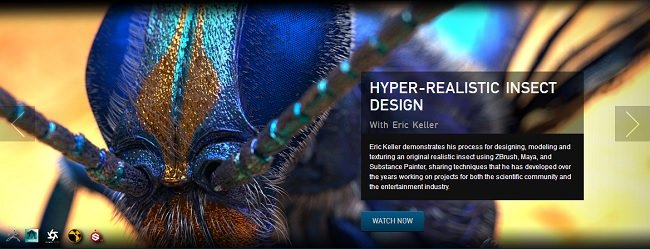 The Gnomon Workshop – Hyper-realistic Insect Design with Eric Keller 2017