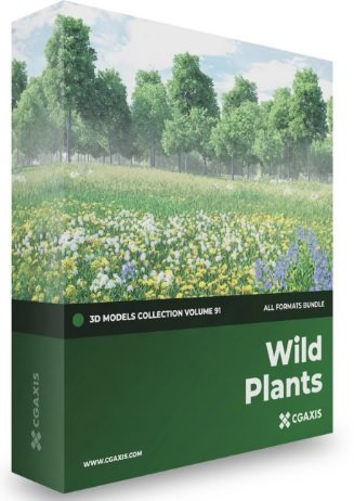 CGAxis Wild Plants 3D Models Collection Volume 91